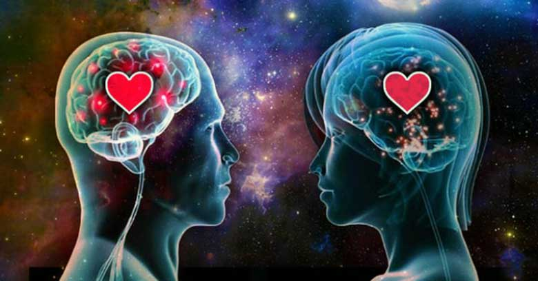 Biology of Love