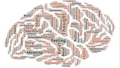 Emotion-Cognition-Behavior